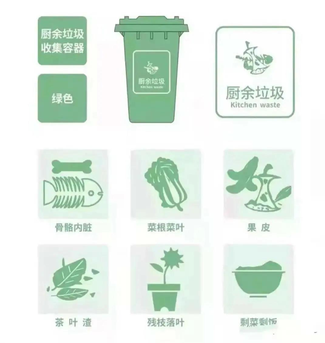 垃圾分类垃圾桶(垃圾分类调查问卷)插图2