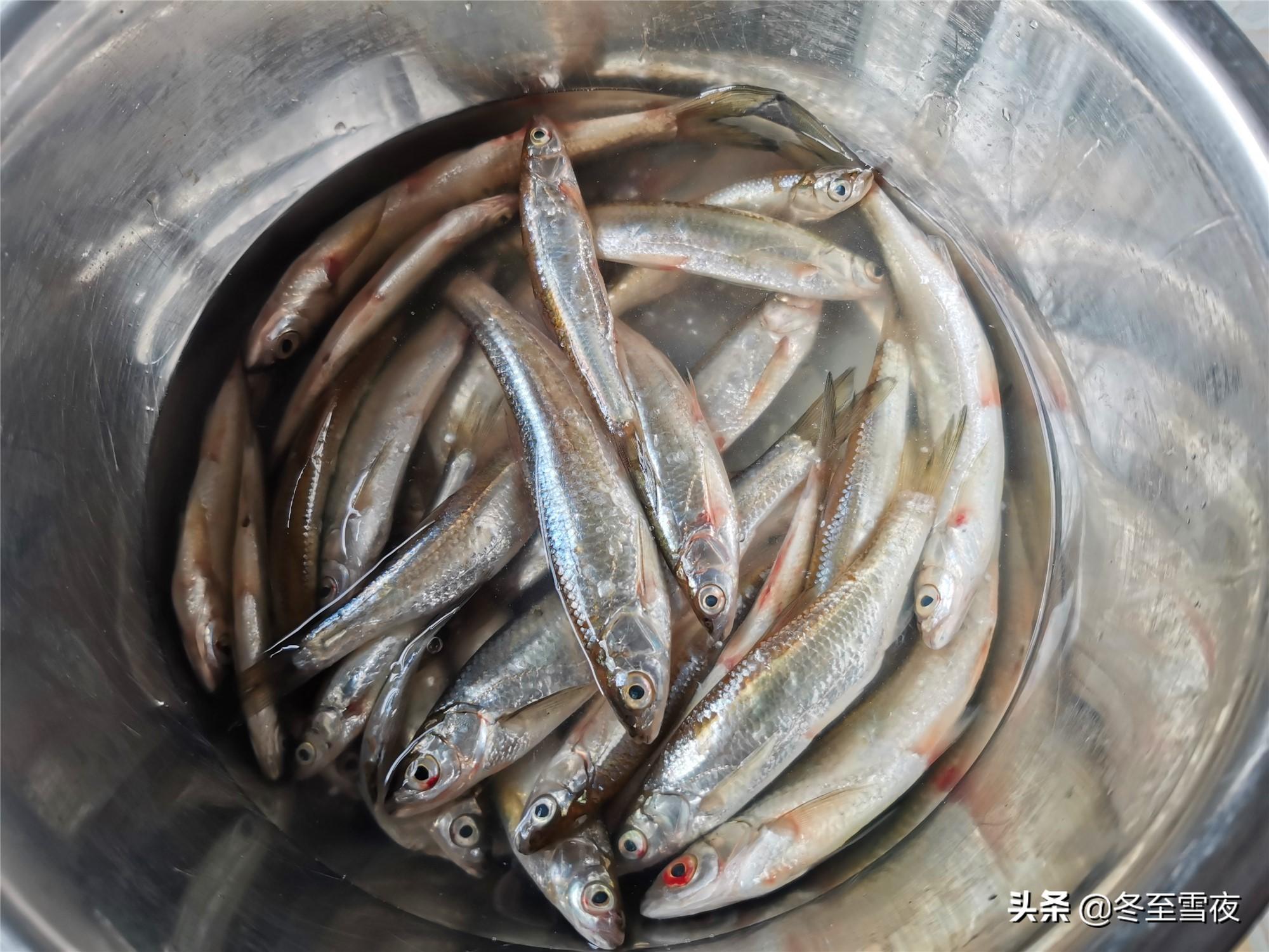 怎样把小河鱼炸得又香又酥,教你干炸的做法,金黄酥脆味道香 美食做法 第2张