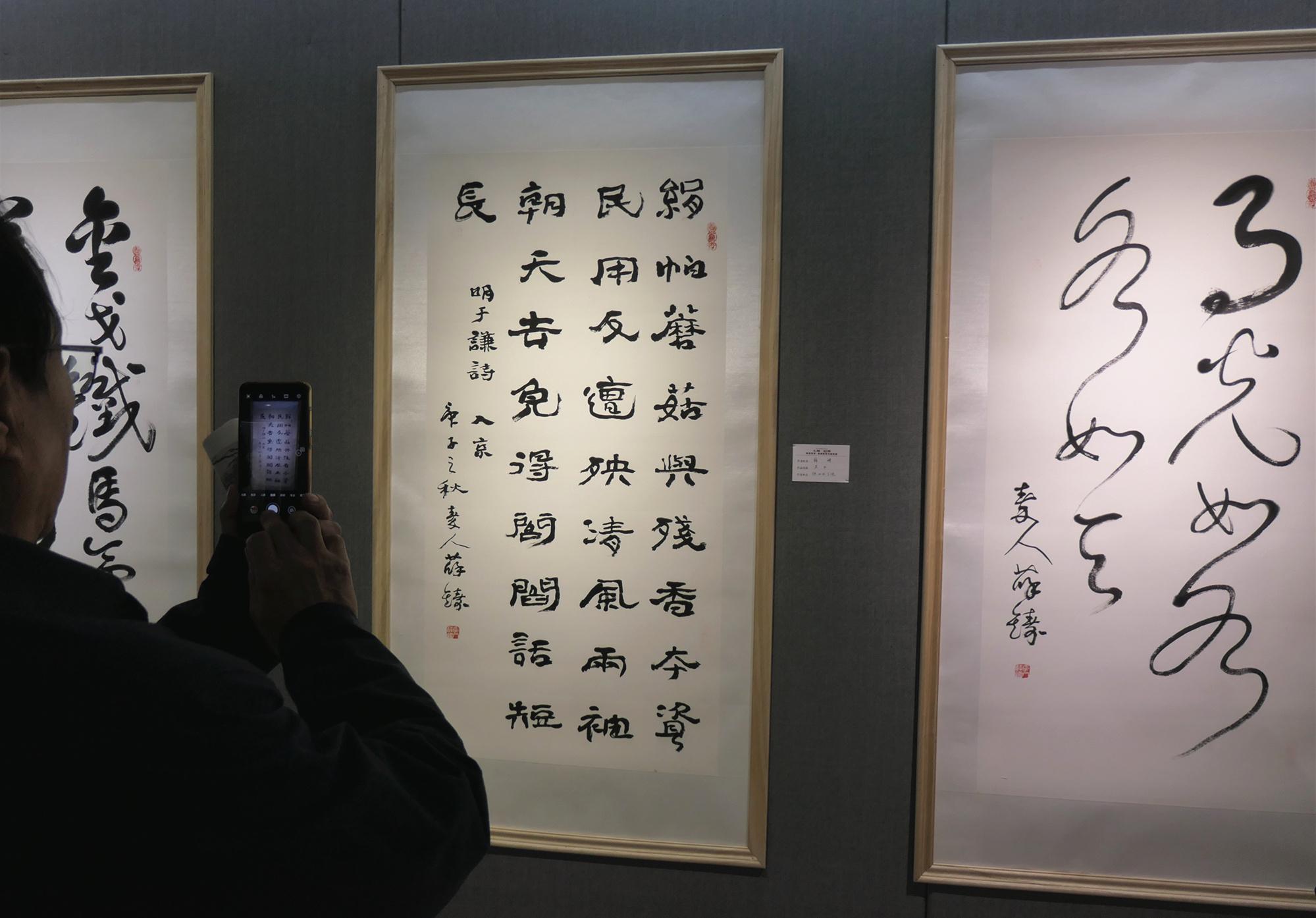 """因雁结缘、艺术走亲""""大雁·迴雁""""书画联展西安开幕"""