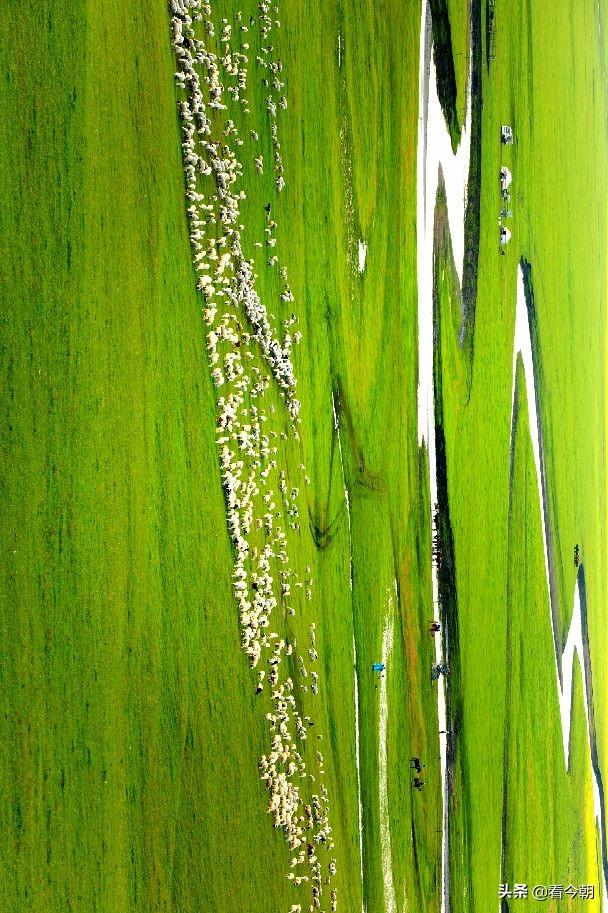 大草原上有一条湾湾的河,她的名字叫:莫尔格勒河