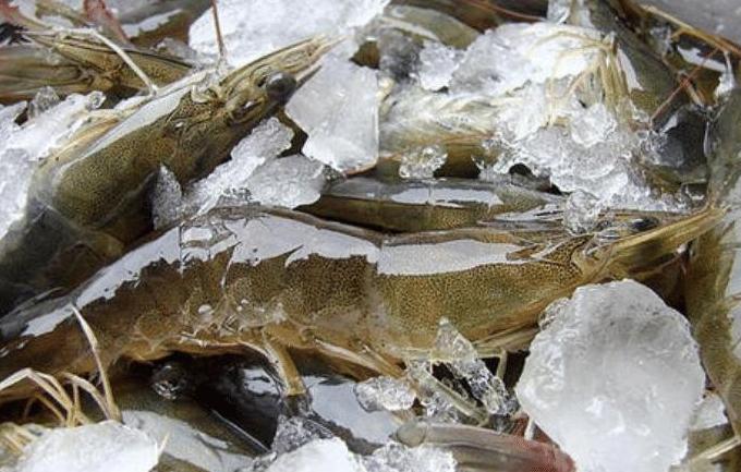 買大蝦,記住3個技巧,挑到的蝦個個質量好,鮮味足營養流失少