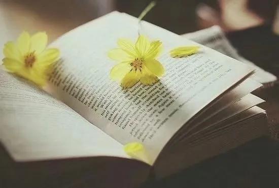 阅读,遇见更好的自己