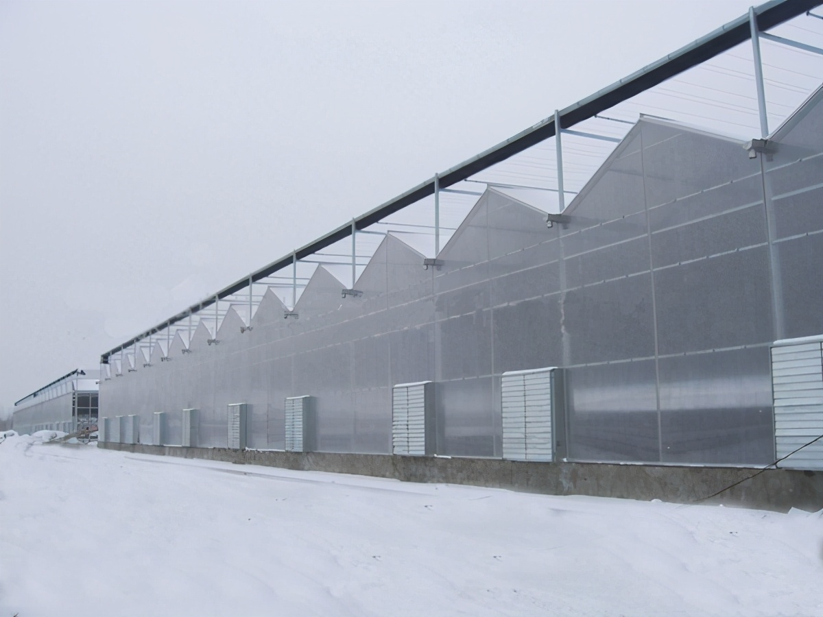 温室大棚冬季增温方案,适合自己的才