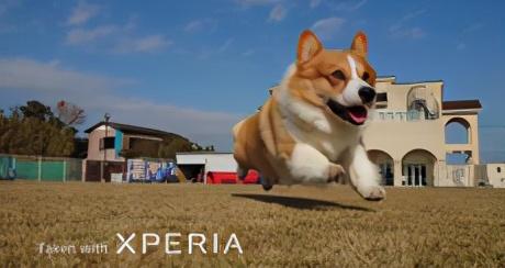 源自索尼相机技术,国行版索尼Xperia 1 II 发布