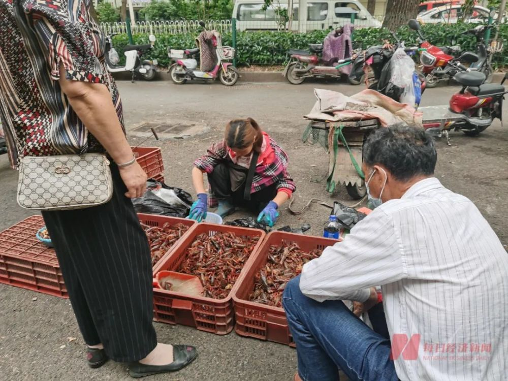 """小龙虾跌出""""有史以来""""最低价!养殖户没赚钱,3500亿产业能翻红吗"""