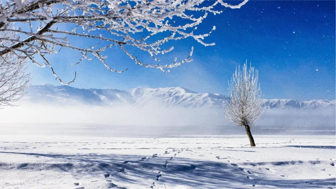 免费游西藏日喀则景点,赏云端冰川