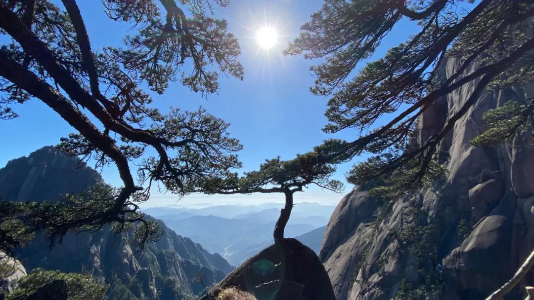 东学团建(上海校篇)|天気がいいから、登山しましょう