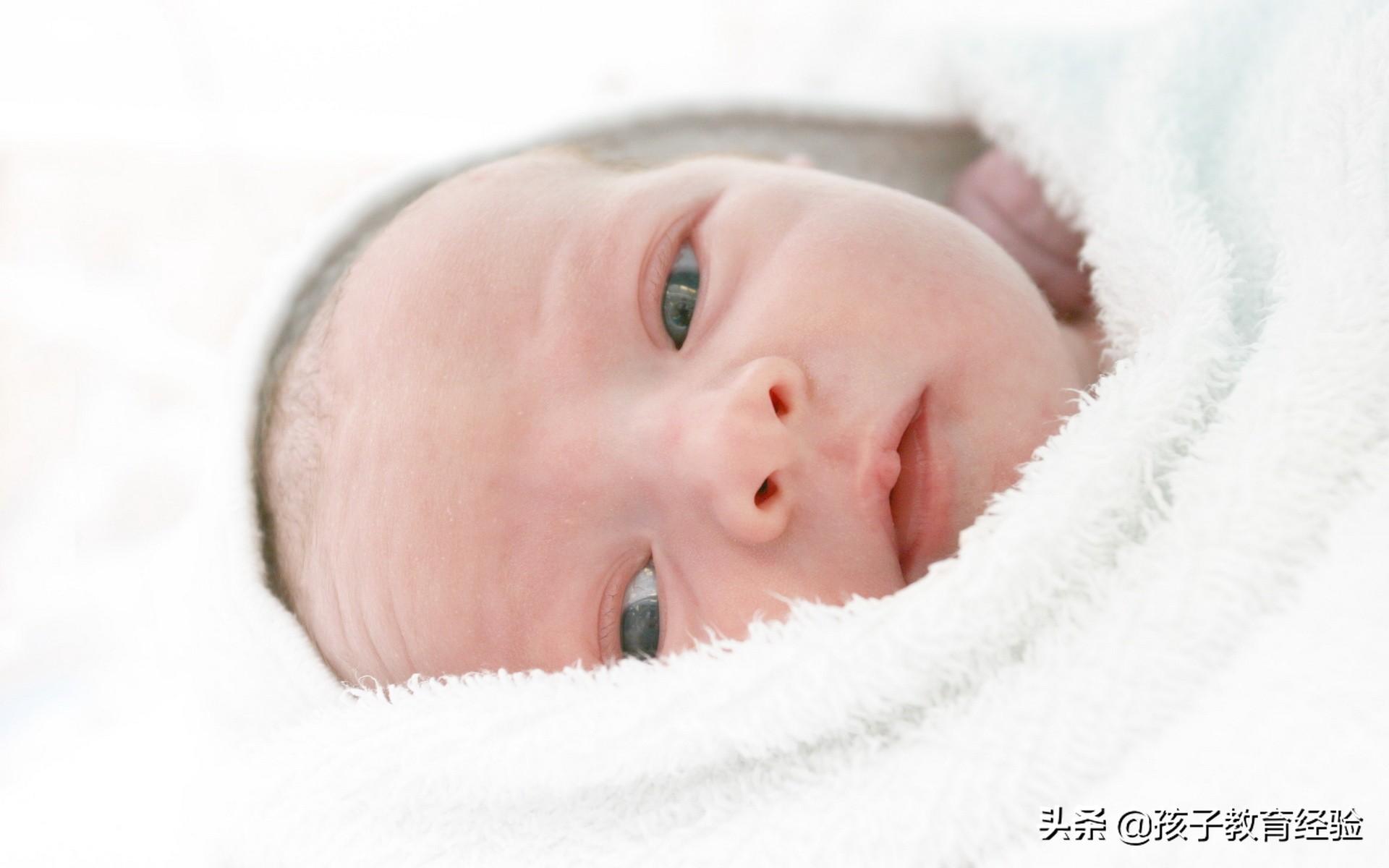 怎样与宝宝交往?家庭教育你知道越多就会做的就越好