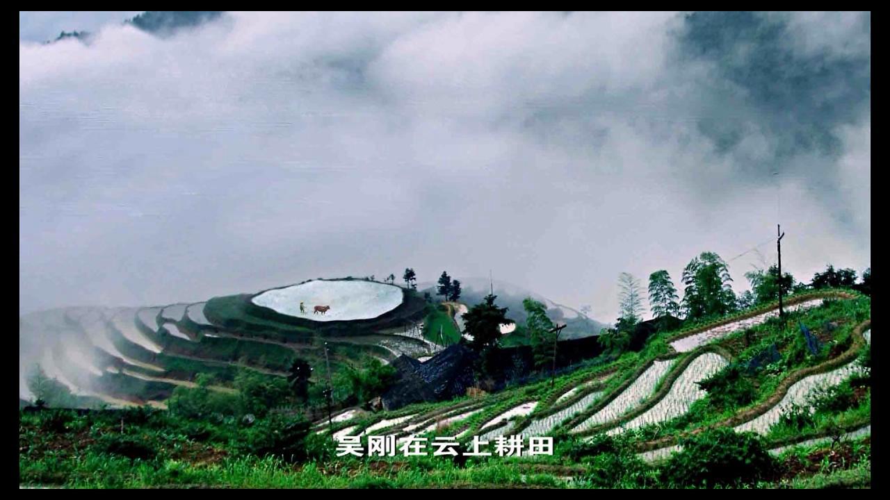 雪峰山梯田弧线,勾勒出古今农耕文明传奇