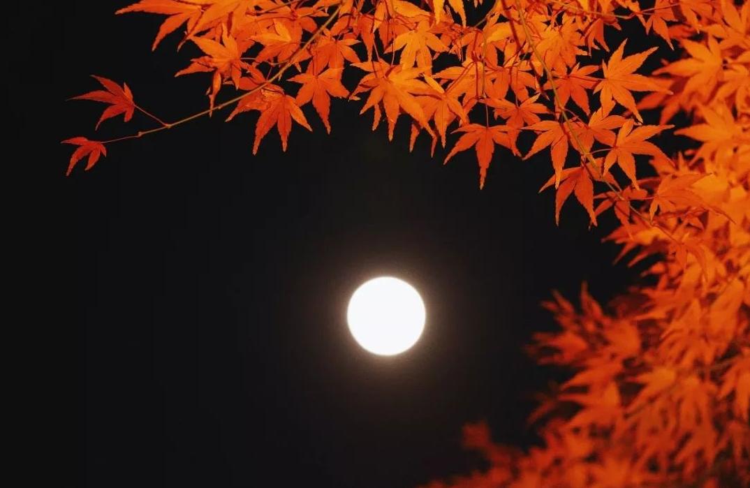 「诗词鉴赏」十五首中秋的诗词,好时节 愿得年年 常见中秋月