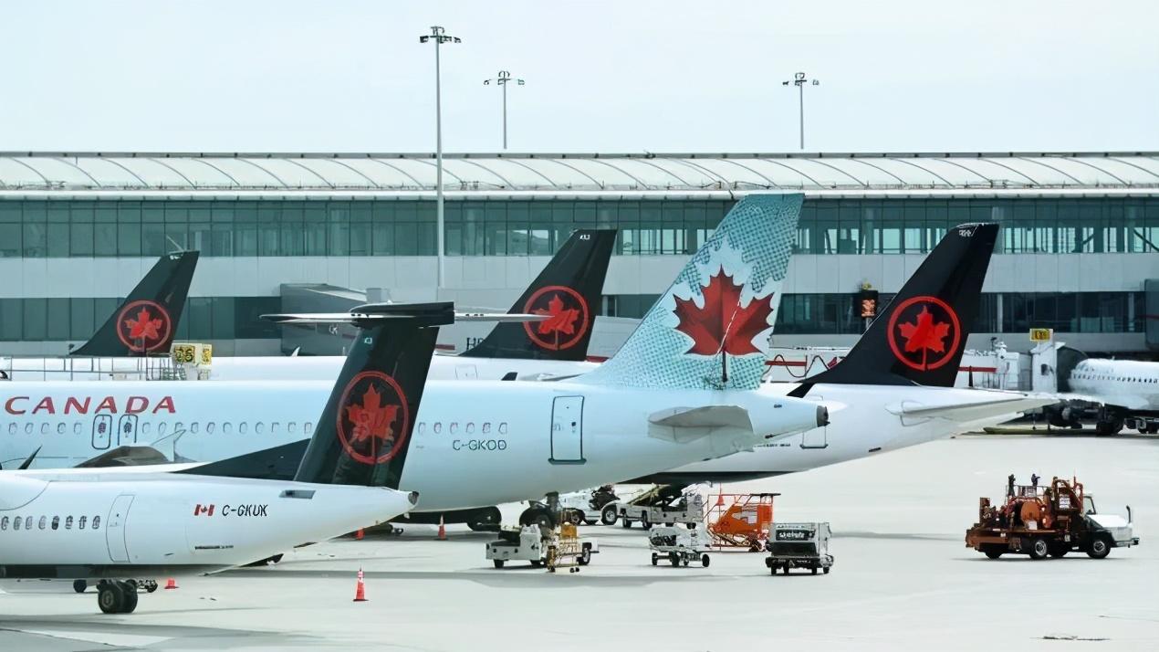 加拿大航空业有多惨?机长空姐无家可归 辛酸入住小货车