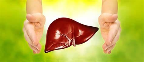 闢謠:長期吃護肝片,真能保護肝臟不發病嗎?聽聽肝病醫生怎麼說