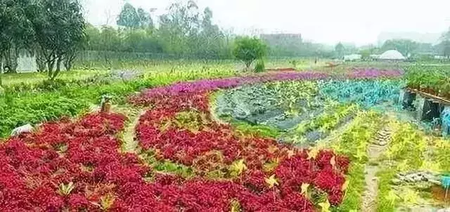 观光休闲农旅策划5大基本方法、7种模式、25种类型