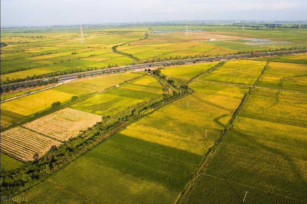 寻找农业出路,不要让规模化蒙蔽了双眼