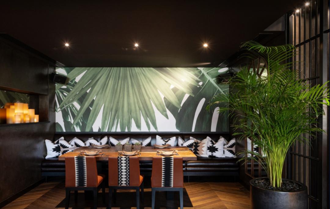 野性森系   魅力热带商业空间