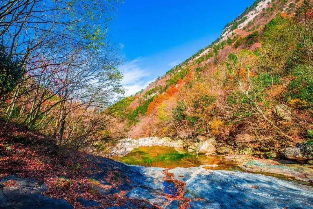 多彩森林,天然氧吧,秋色斑斓最美时,安徽这5A景区终于免费游