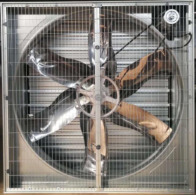 温室大棚风机如何布置?数量如何布置,这几点是关键