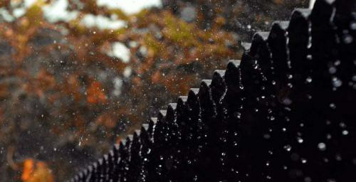 生活随笔之听雨