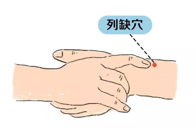 經絡穴位解讀——肺經的要穴列缺、魚際、少商
