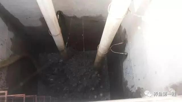 池塘底排污:排除废水,改良底质,净化水体,水好鱼才好