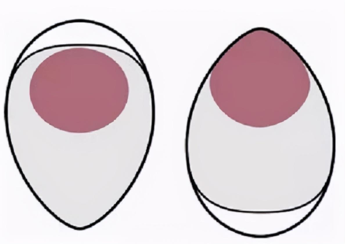 如何挑选鸡蛋 鸡蛋保存技巧 不用冰箱 3个土方法 轻松保存半年