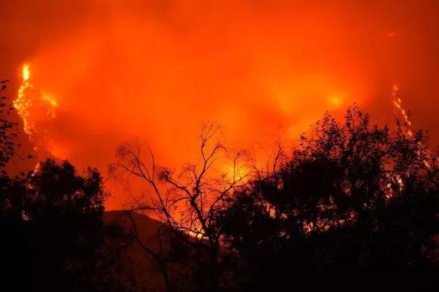 """天灾还是人祸?山火烧了24个""""纽约"""",两党候选人却还在""""点火"""""""