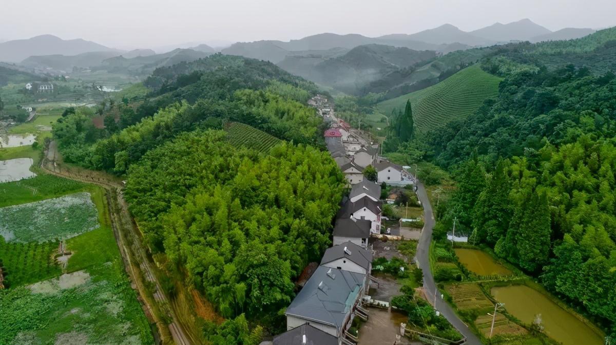 """「文旅案例」""""公司村农场""""模式,6年时间村集体资产增长300多倍"""