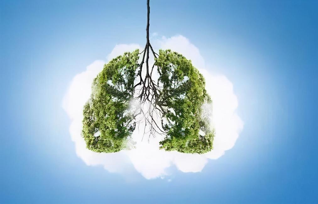 春养肝、夏养心、秋养肺、冬养肾,教你一年四季怎么养 中医养生 第2张