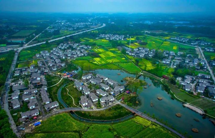 2021年农村大发展,四个项目投资少利润高,管理好一年30万