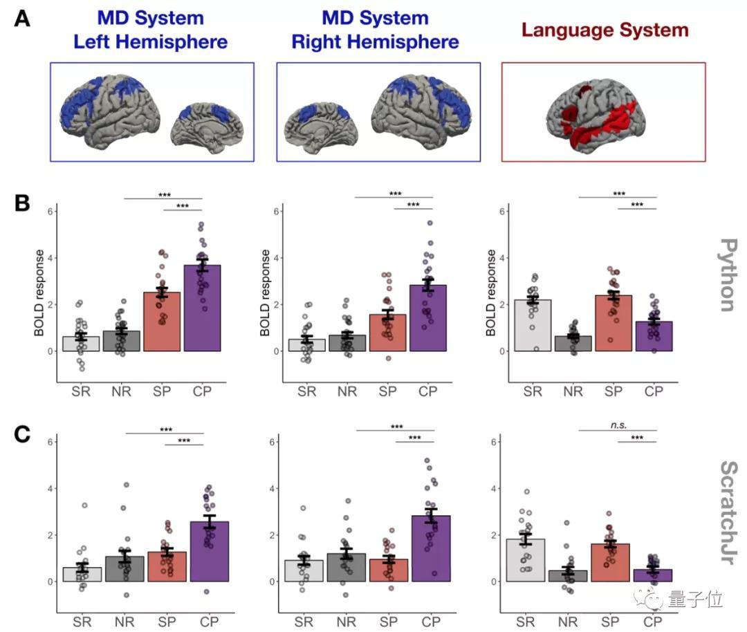 数学好=编程能力强?MIT新发现:二者激活大脑区域并不同