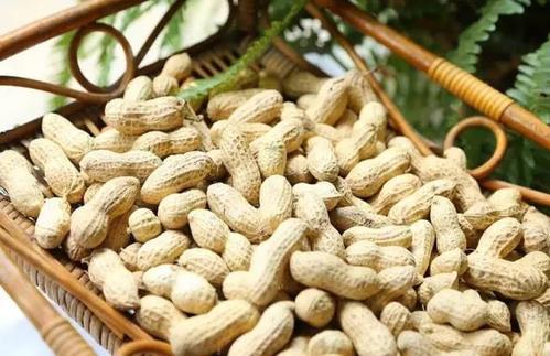 """花生被称为""""长命果"""",可吃花生时到底要不要去皮?每天吃多少"""