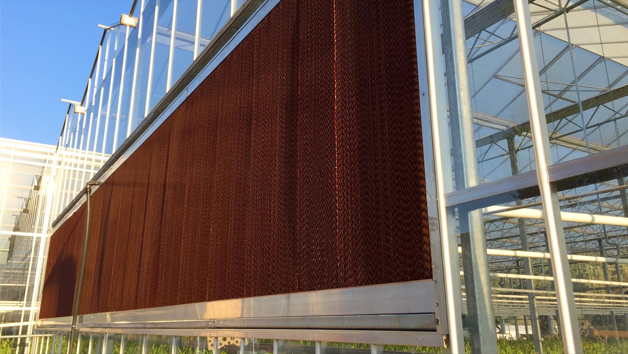 玻璃温室通风降温系统工作原理是怎样的?农业种植为什么使用它