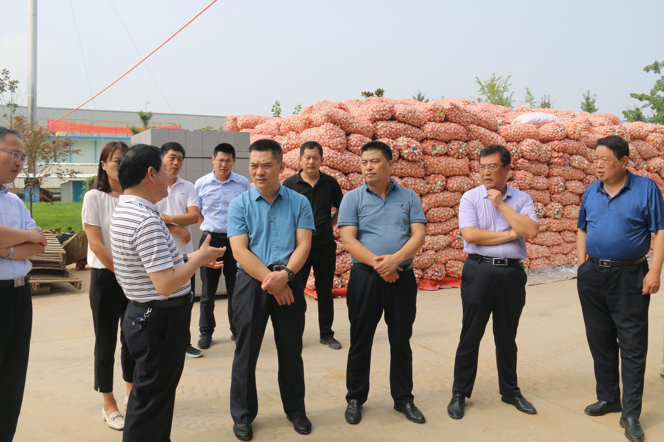 擦亮河东农产品名片丨市委办公室来我区调研农产品加工企业