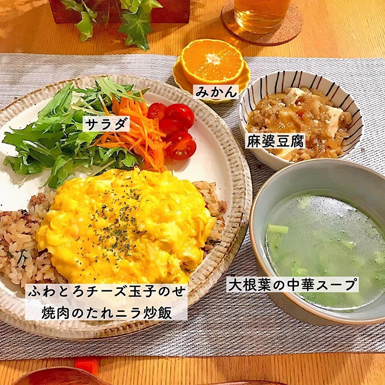 热衷节约的日本主妇,每顿饭不超过7元,网友:太会省钱了 节约省钱 第9张