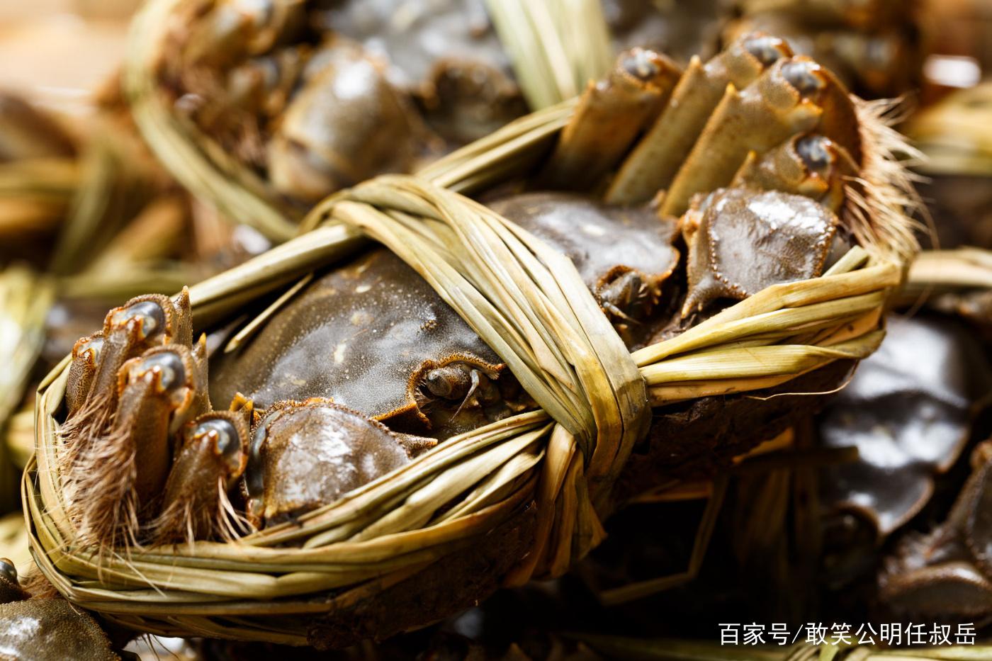 大闸蟹又名河蟹,我国很多地方都有,但阳澄湖的最出名而且昂贵