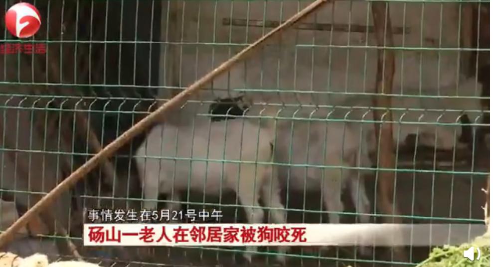 68岁老妪被邻居家狗撕咬身亡 狗主人:狗已上吊自杀