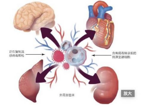 肝癌并不可怕,可怕的是肝癌引发的并发症