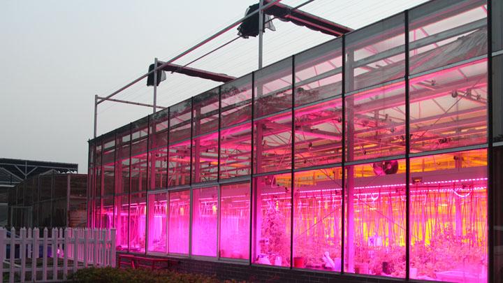 科研型智慧温室大棚现状和未来发展趋势