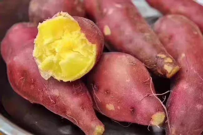 好看又好吃的超级蜜薯:玛莎莉
