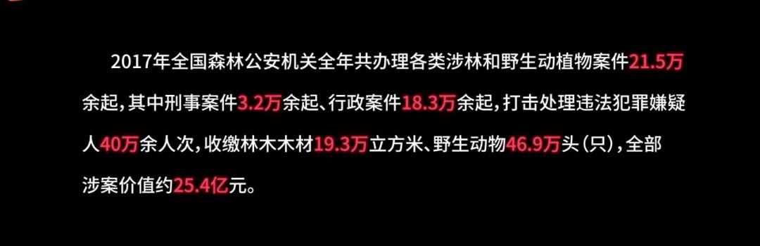 """4集的播放量就破1亿,湖南卫视又拍出了一部""""王炸""""?"""