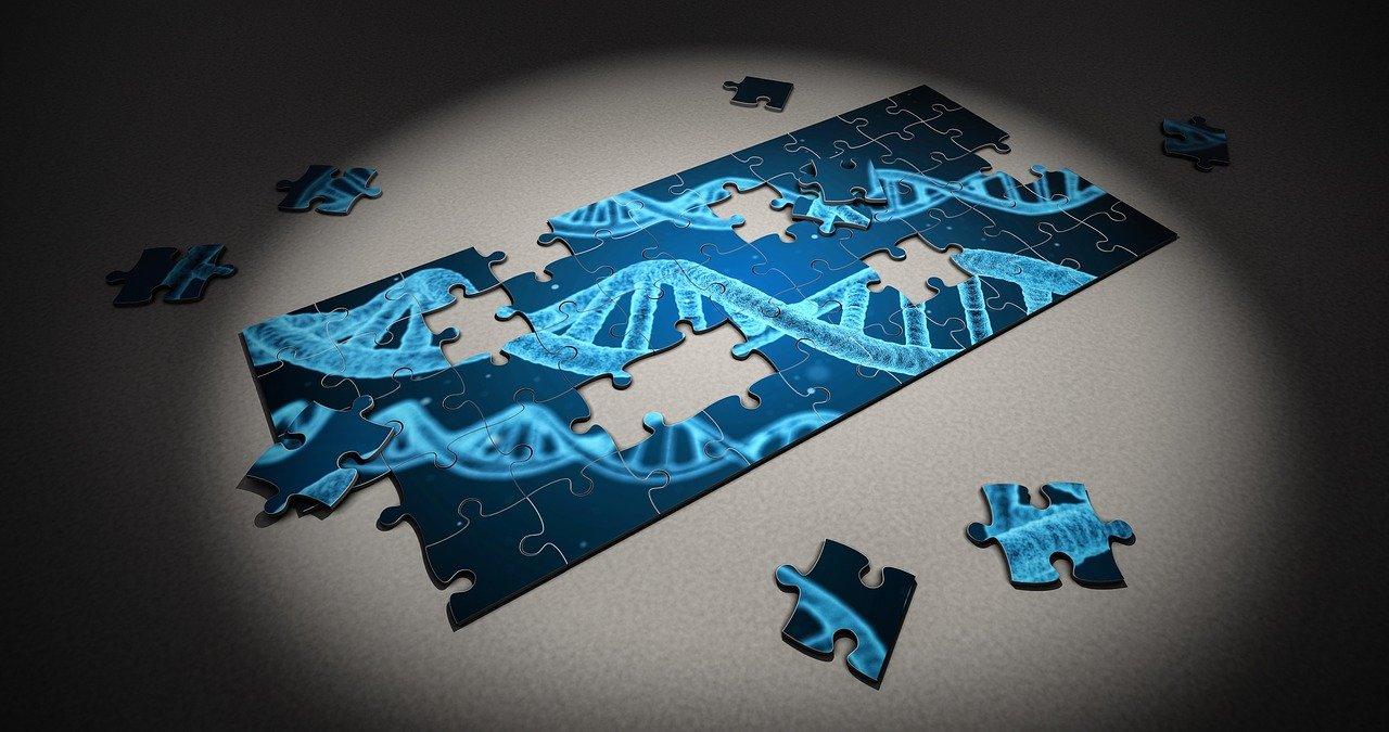 欧倍尔基因编辑效率检测虚拟仿真软件,让基因编辑实验不再受限