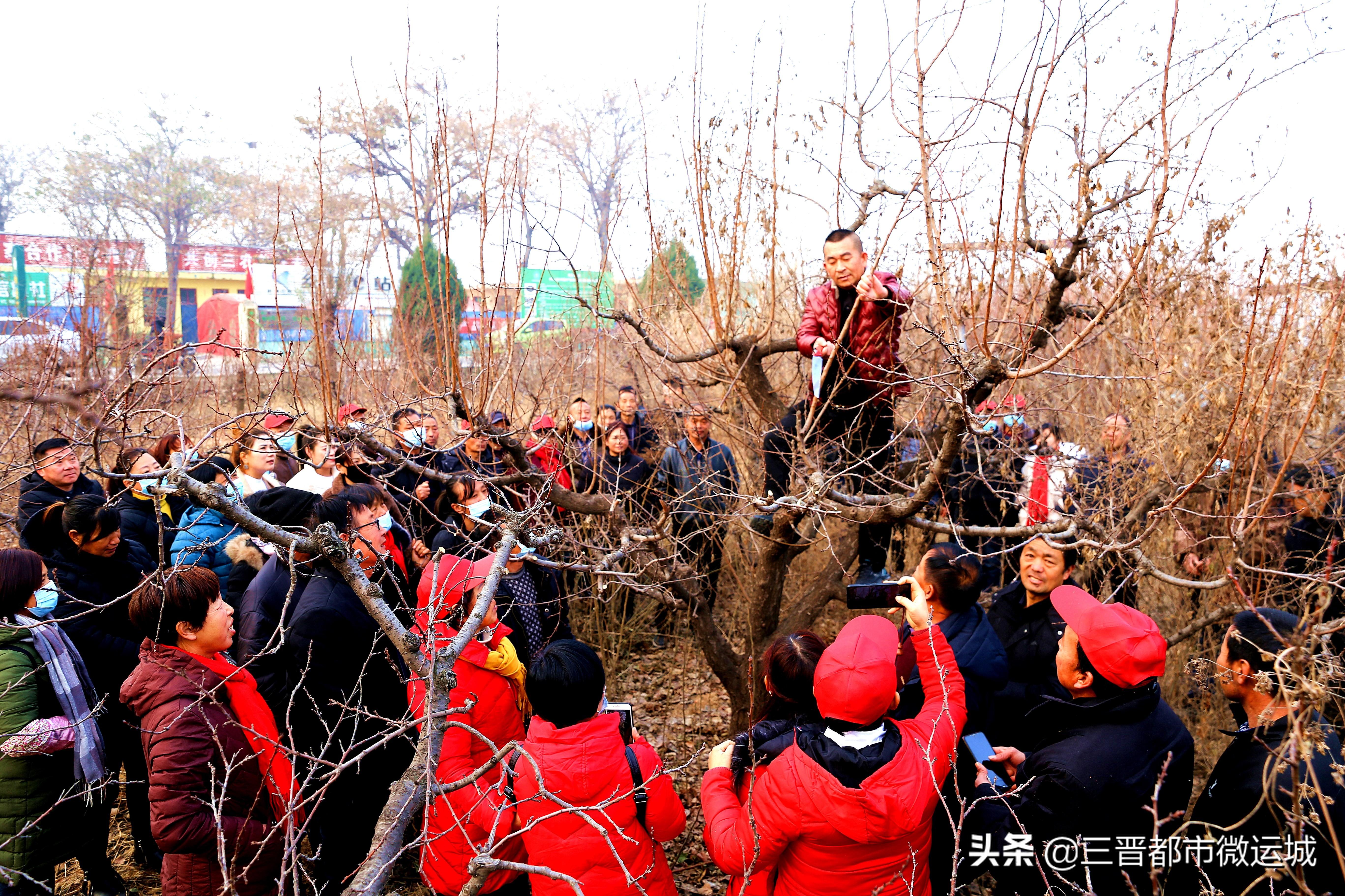 山西夏县:高素质农民教育培训