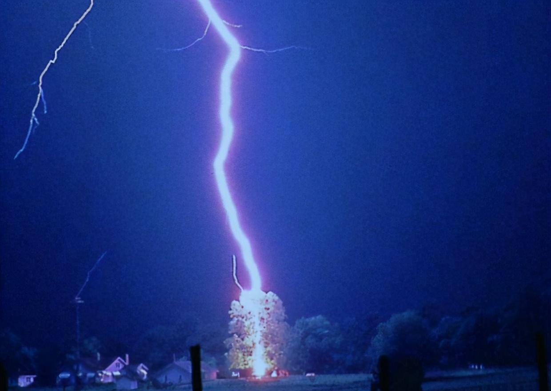澳大利亚某小学15名师生在操场活动,一道雷劈下,15人被全部撂倒