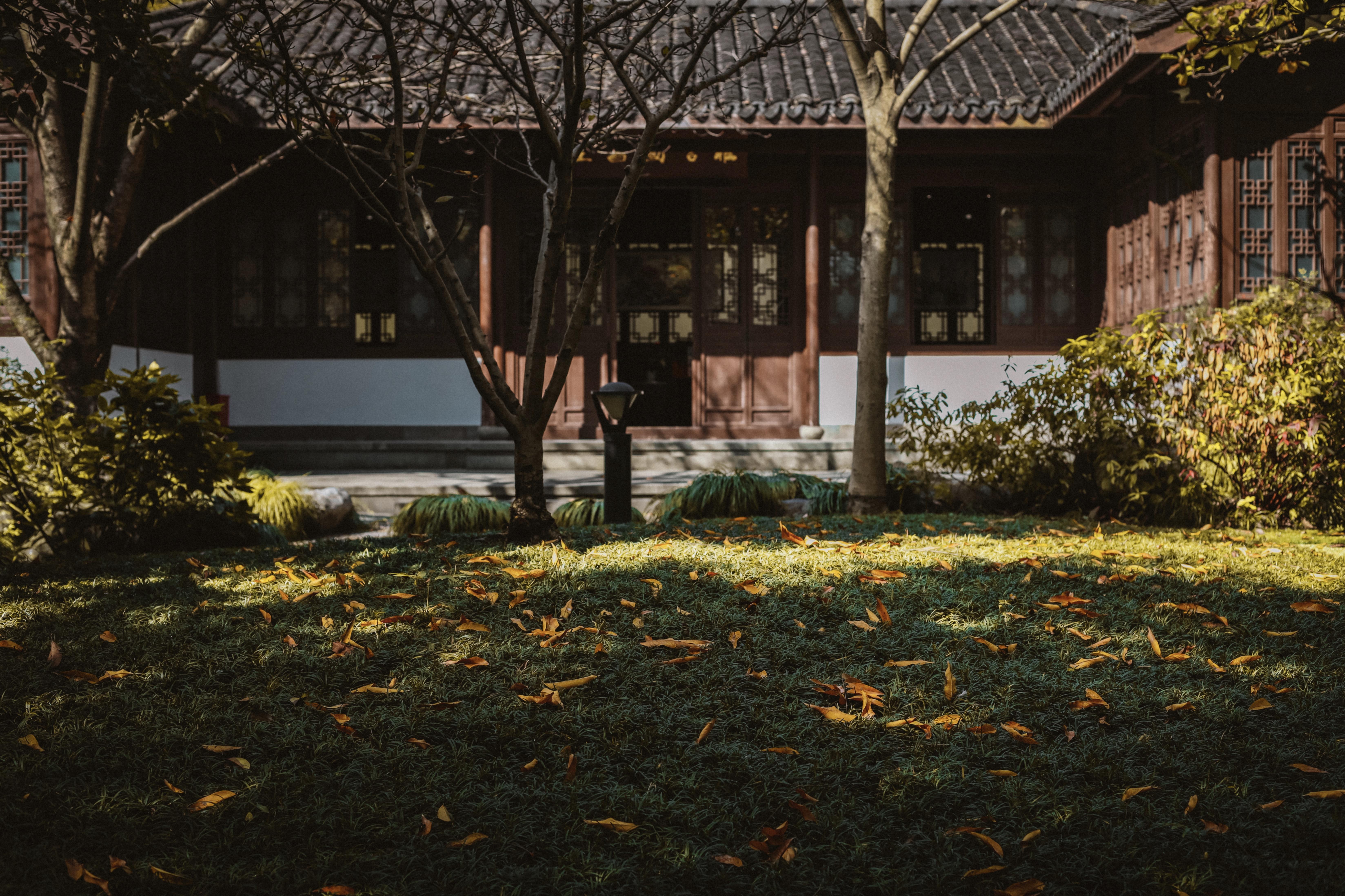 杭州西湖旅行指南!假期必去的6个地方