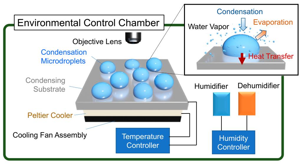 冷凝水滴会自发生成双氧水,地球上的氧气可能是这么来的!