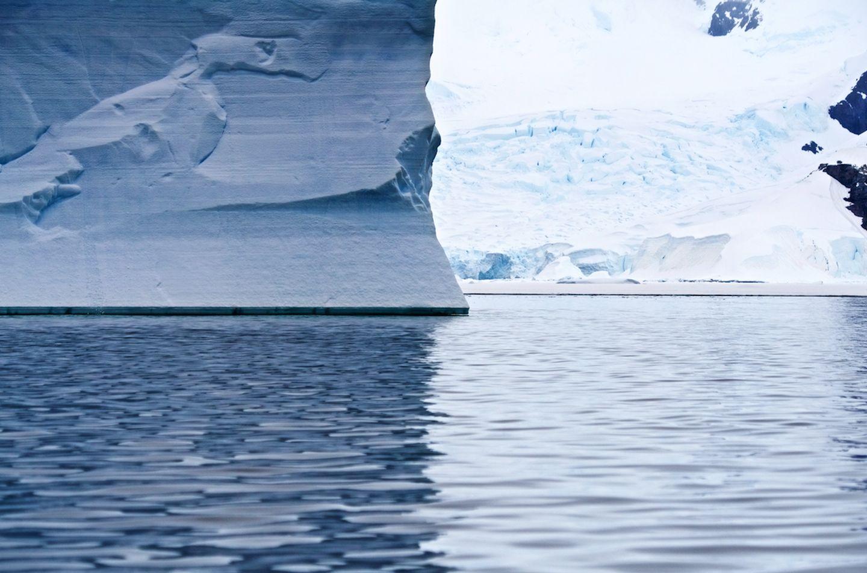 南极旅行的体验是怎样的?