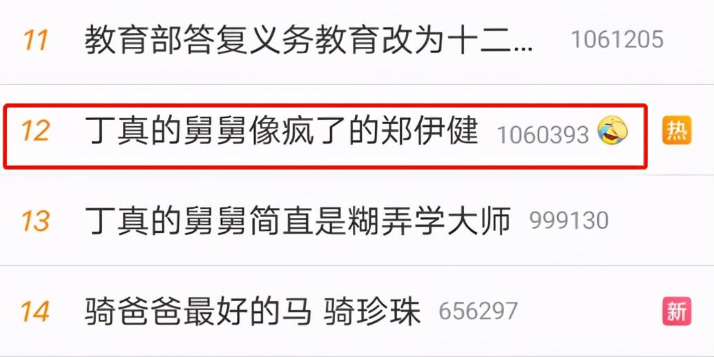 丁真的舅舅火了!长得像疯了的郑伊健,摄影师称其可以考进TVB