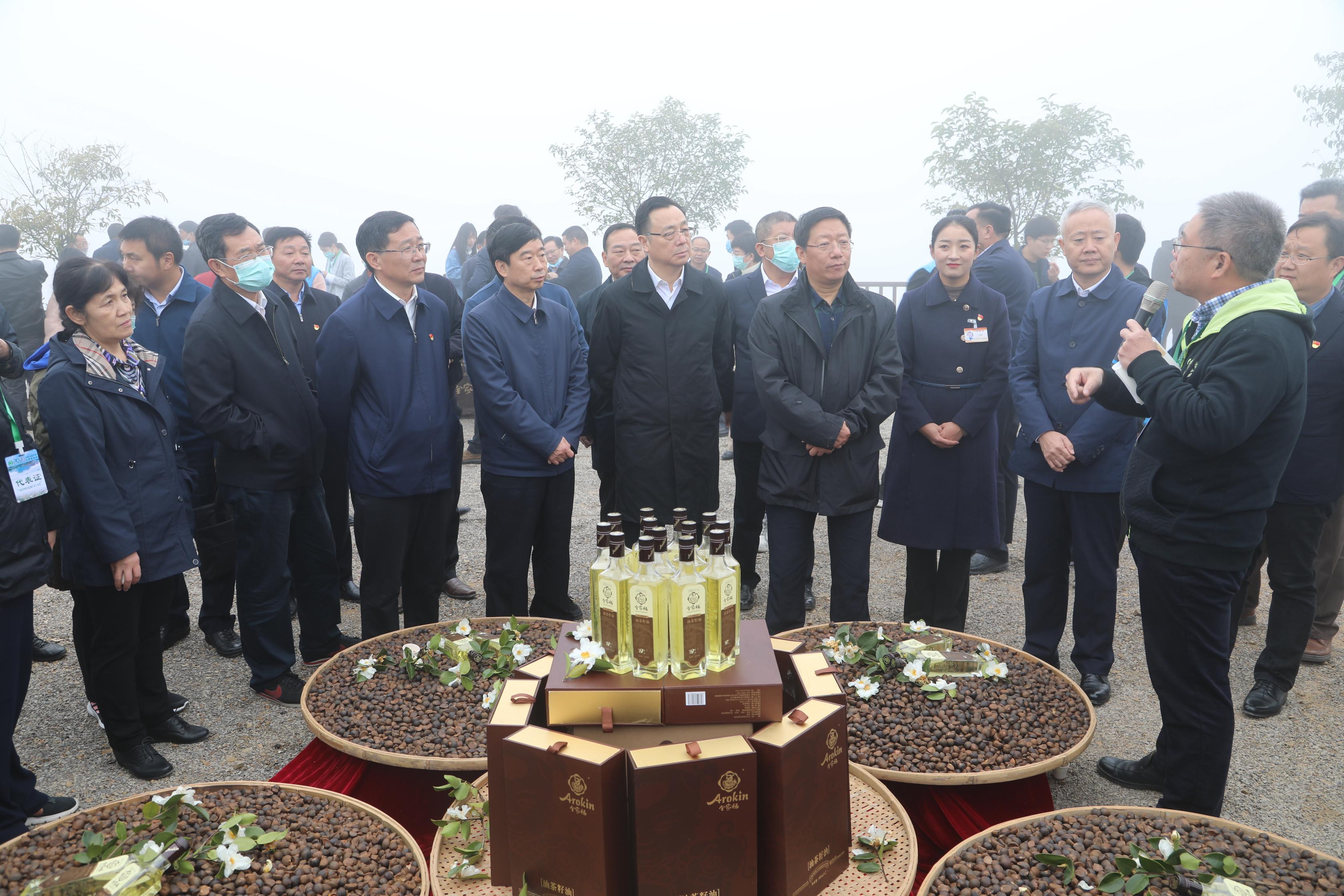 油料上山 荒山变金山――全国油茶产业发展现场会在河南省光山县召开
