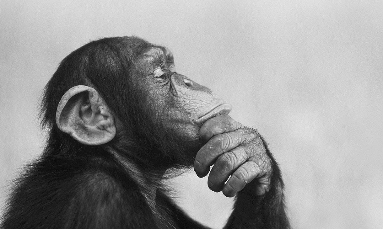 深度思考:人與人之間的差距是什麼,做到這幾點,完全超越別人