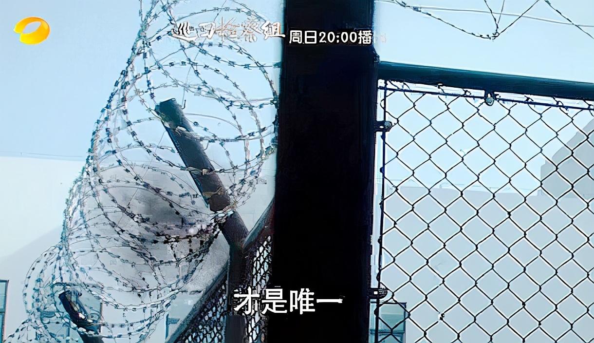 巡回检察组2425预告:监狱遇袭?系米振东策划?冯森倒下了?